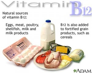Sources of Vitamin B-12